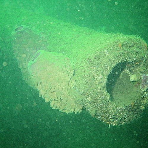 IDS Aalst - PADI advanced diver