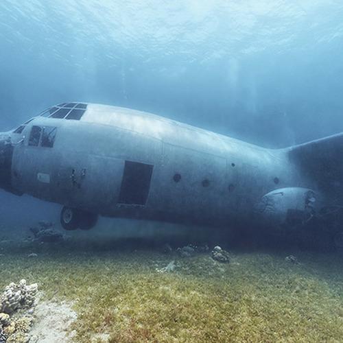 IDS Aalst - PADI boat diver