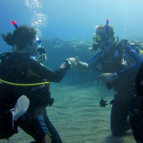 IDS Aalst - PADI assistant instructor